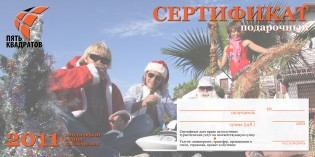 Certificate NY copy